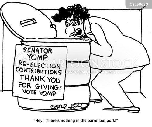 re-elections cartoon