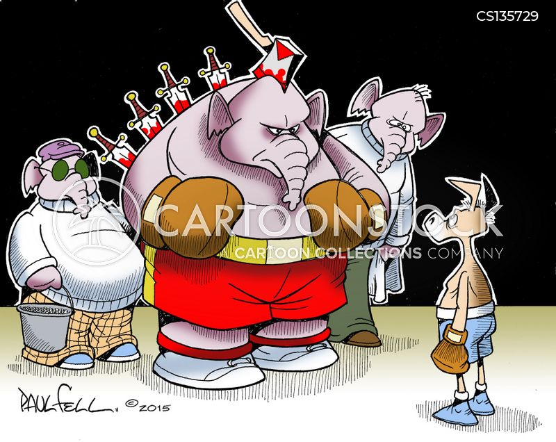presidential nomination cartoon
