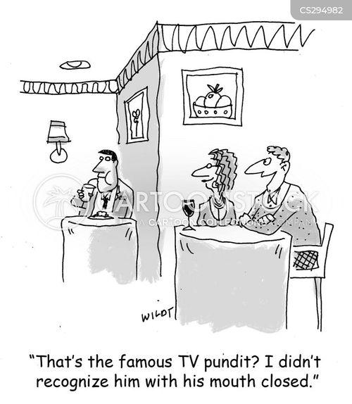 tv pundit cartoon