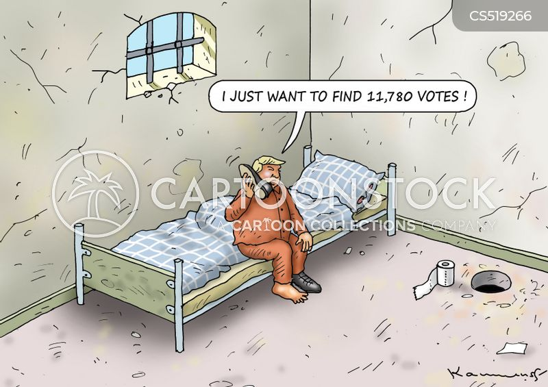 election fraud cartoon