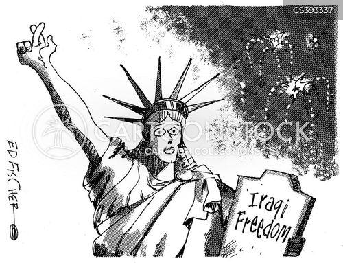 operation iraqi freedom cartoon