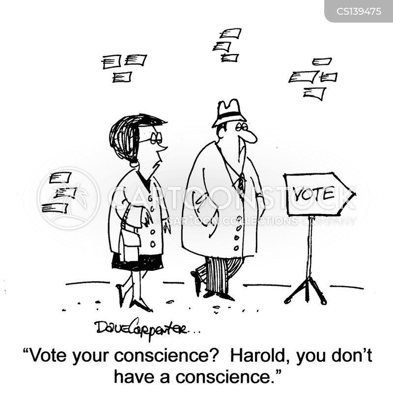 election candidate cartoon