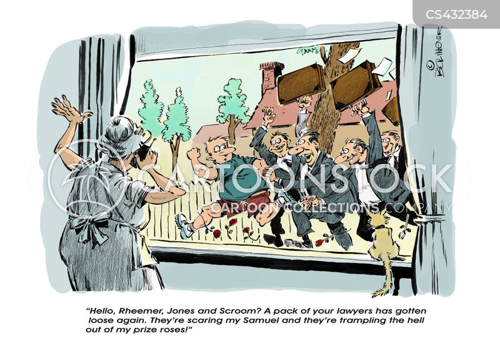 legal advisers cartoon