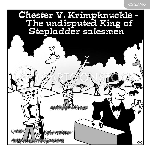 stepladder cartoon