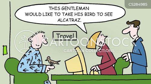 birdman of alcatraz cartoon