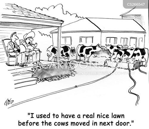 home sales cartoon