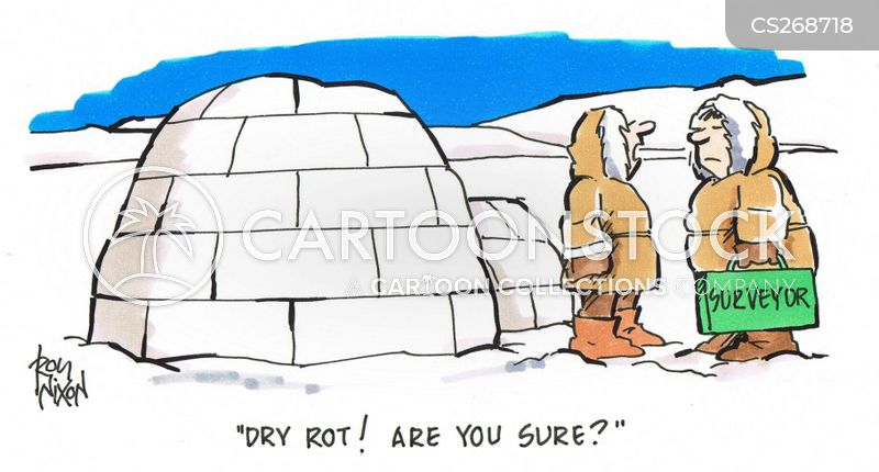 Rot Problems cartoons, Rot Problems cartoon, funny, Rot Problems picture, Rot Problems pictures, Rot Problems image, Rot Problems images, Rot Problems illustration, Rot Problems illustrations