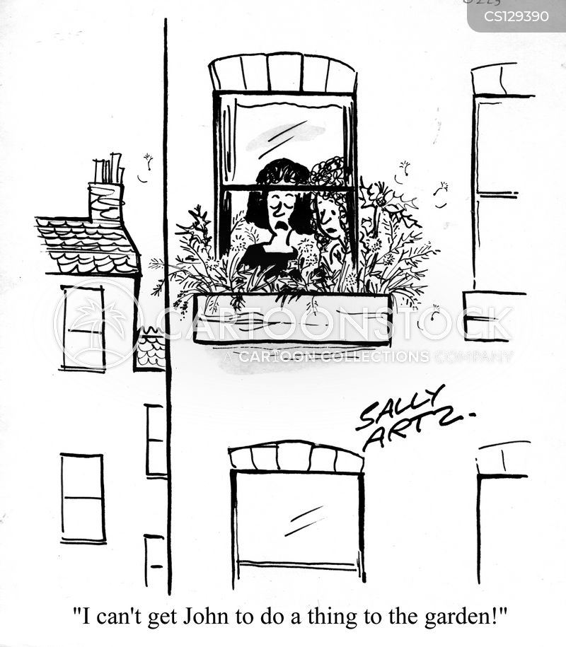window box cartoon