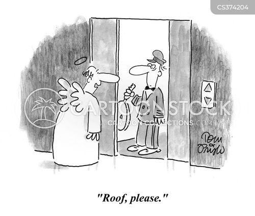 rooves cartoon