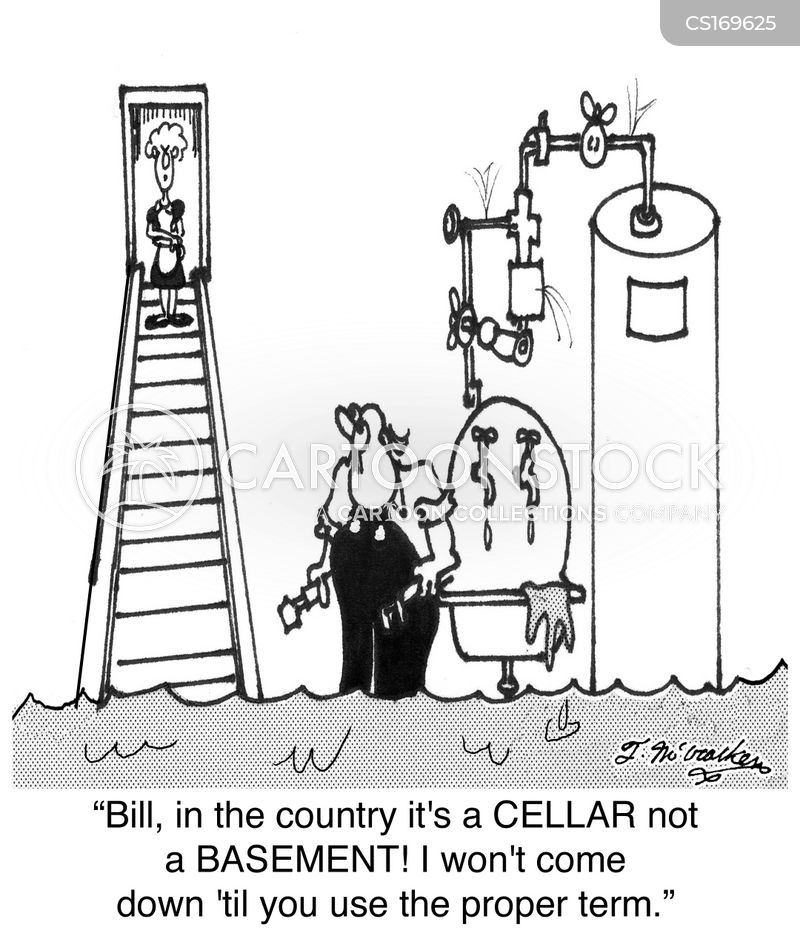 plumbing leak cartoon