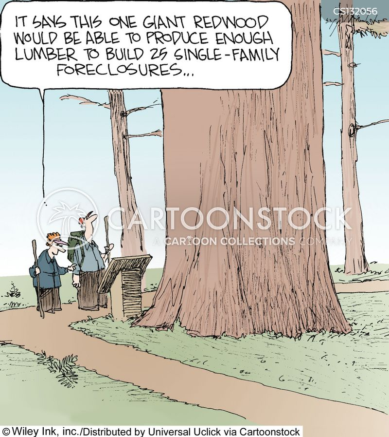 forests cartoon