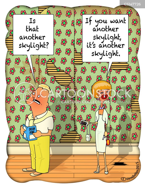 skylight cartoon