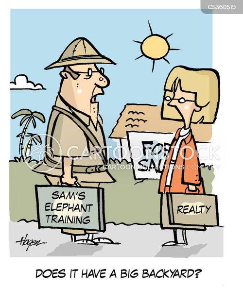 back yards cartoon