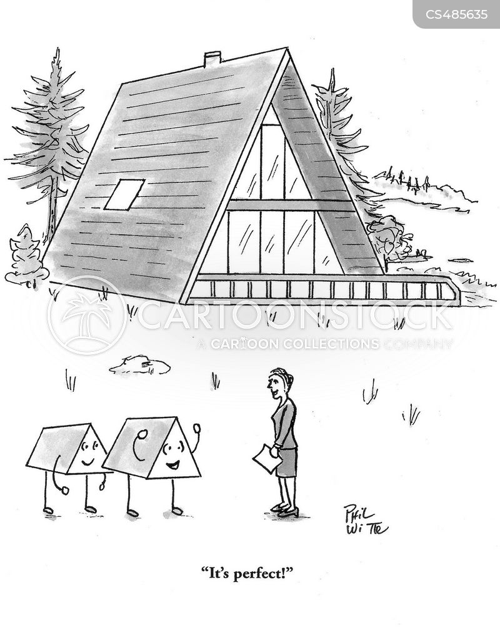 perfect house cartoon