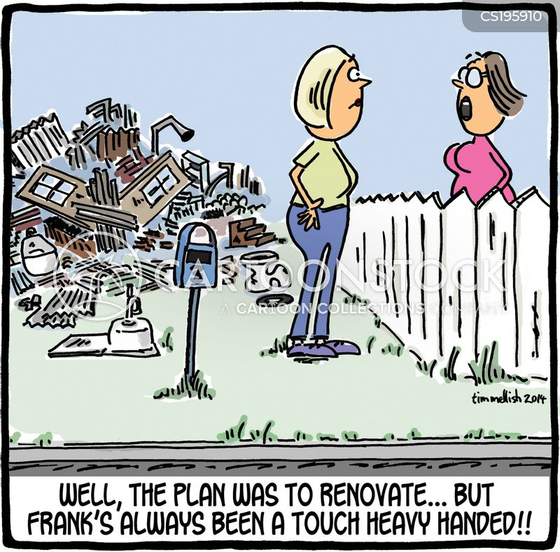 renovates cartoon