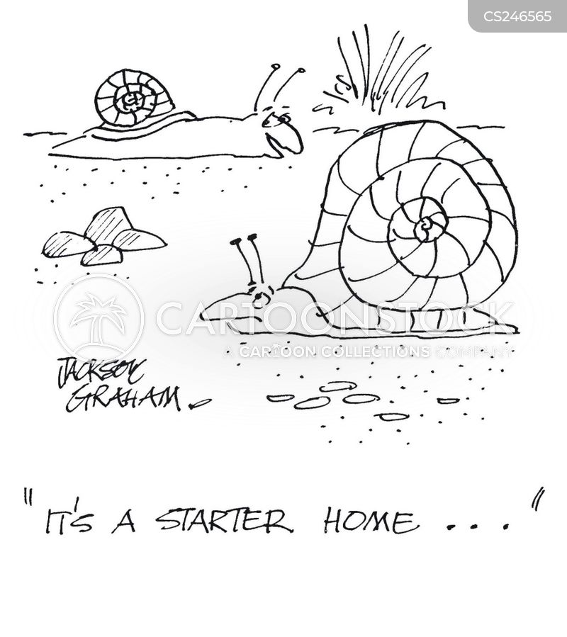 first home cartoon