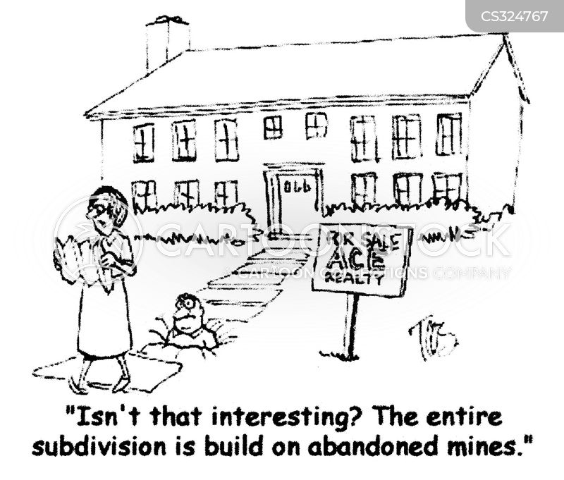 subdivision cartoon