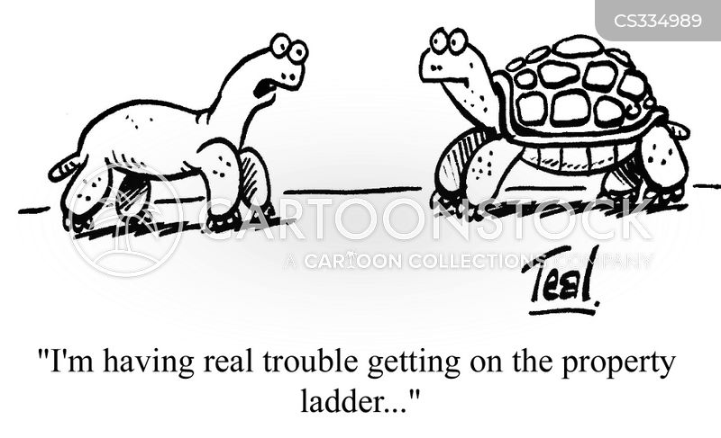 Tortoises' Shells cartoons, Tortoises' Shells cartoon, funny, Tortoises' Shells picture, Tortoises' Shells pictures, Tortoises' Shells image, Tortoises' Shells images, Tortoises' Shells illustration, Tortoises' Shells illustrations
