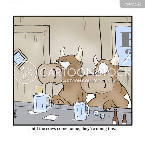 livestocks cartoon