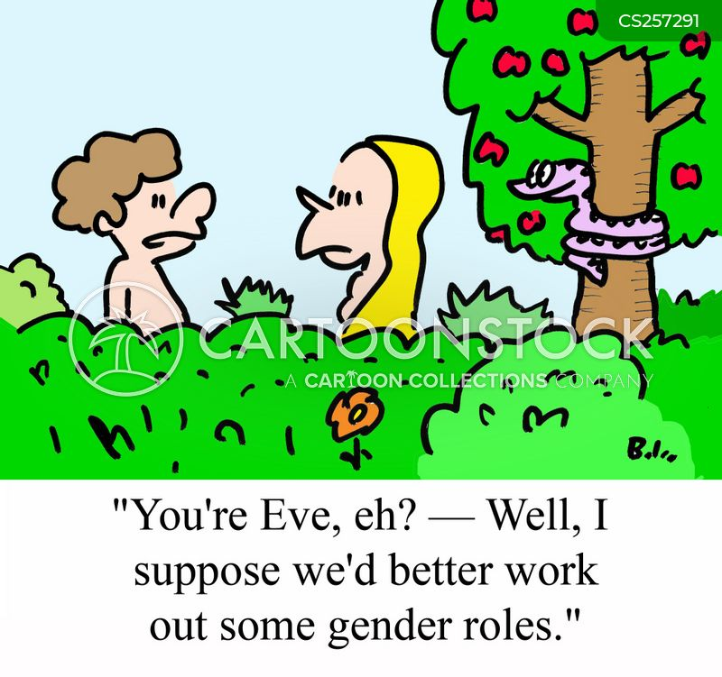 gender battles cartoon