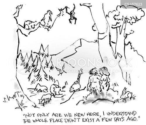newcomer cartoon