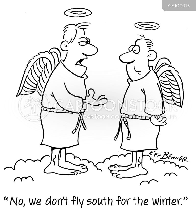 flying south cartoon