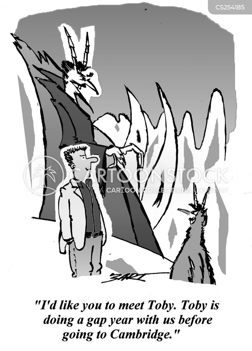 gap-year cartoon