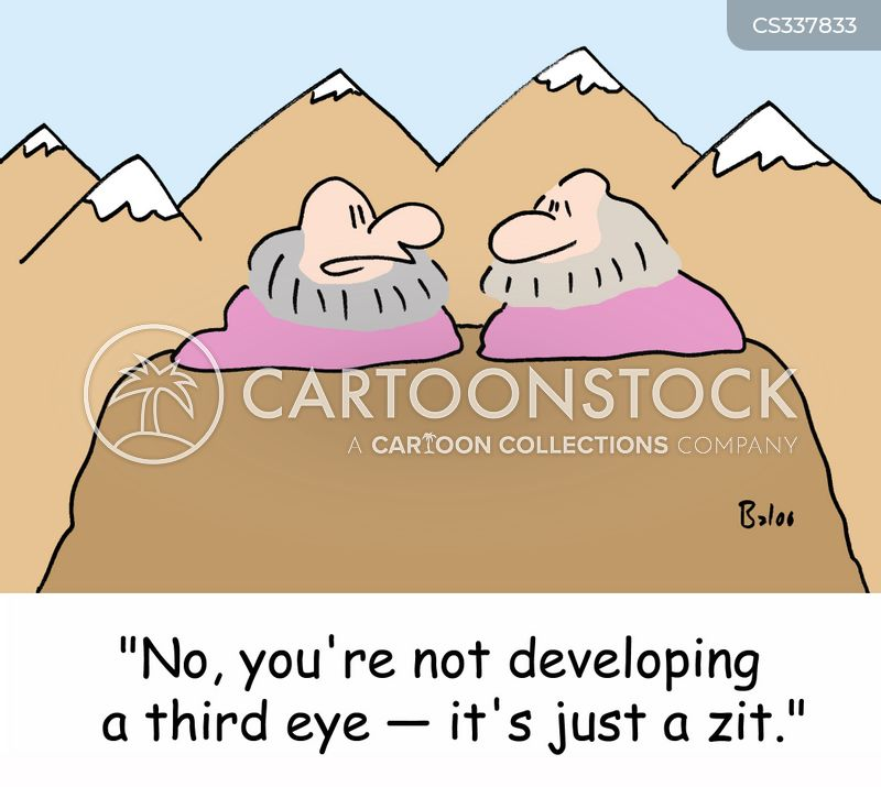 zits cartoon