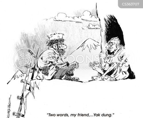 old man on the mountain cartoon