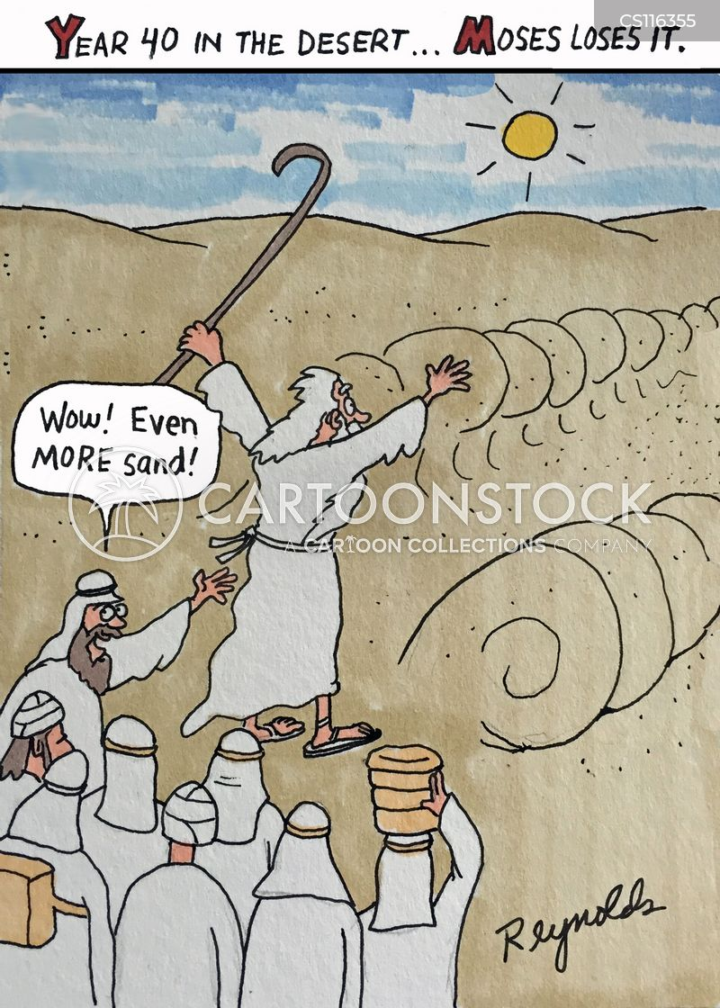 red sea cartoon
