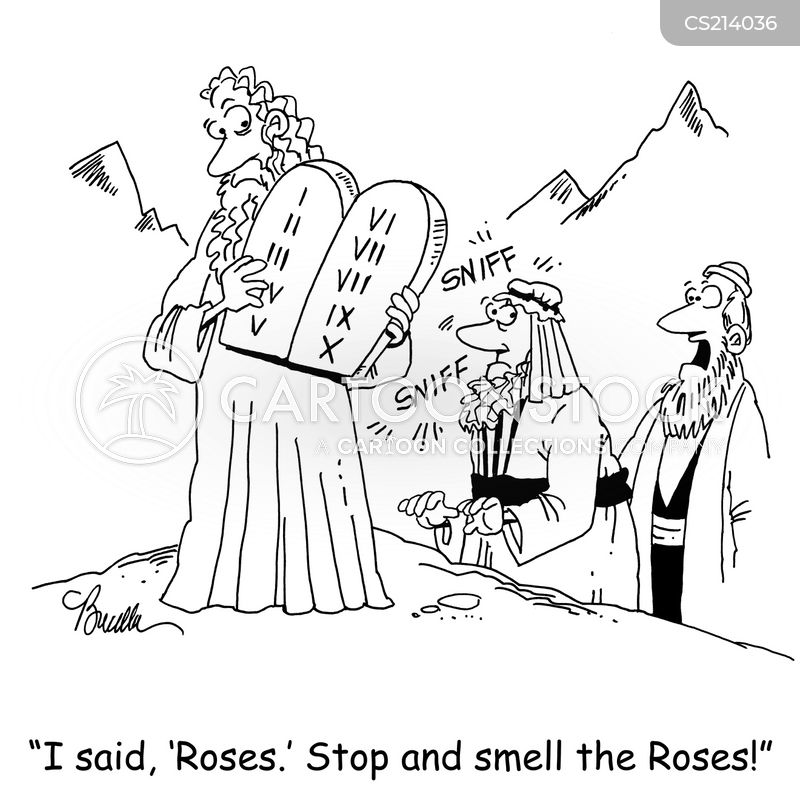 stop and smell the roses cartoon