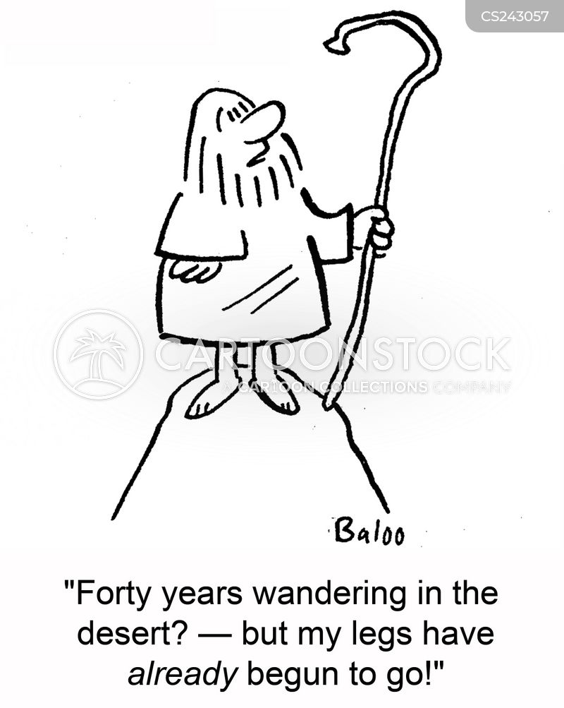forty years cartoon