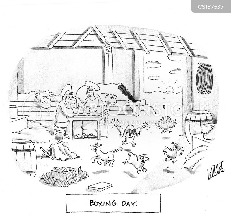 boxing day cartoon