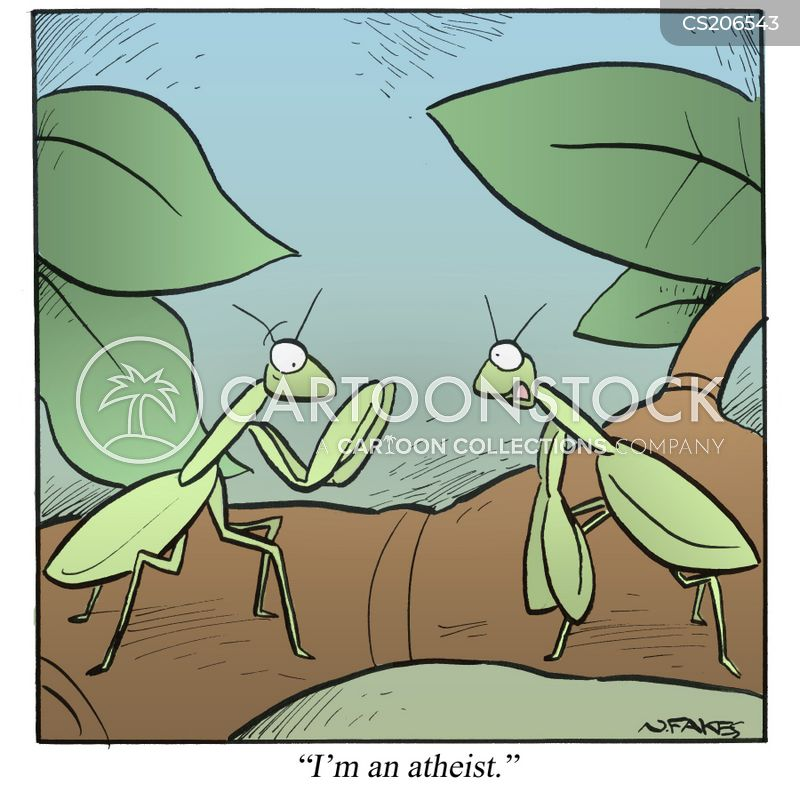 preying mantises cartoon