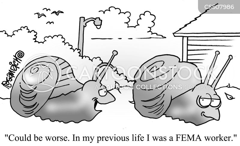 federal emergency management agency cartoon