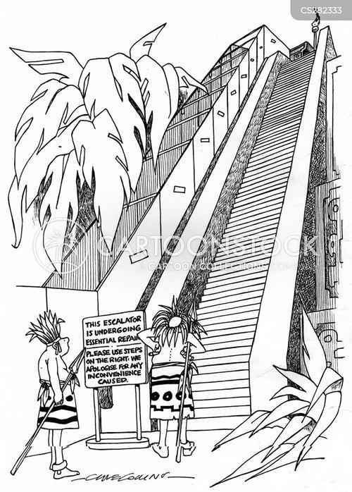 pilgrimages cartoon