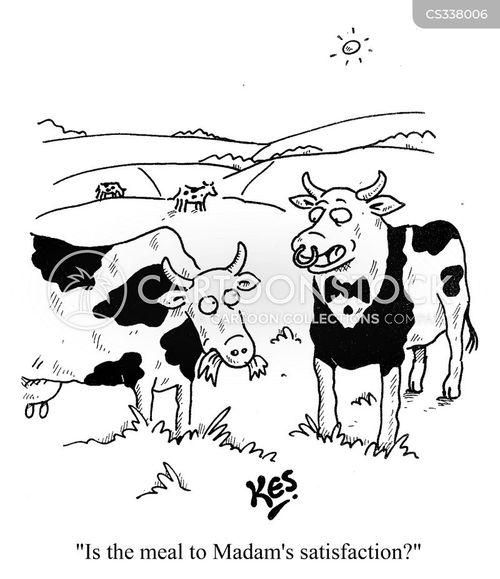 restaurant services cartoon