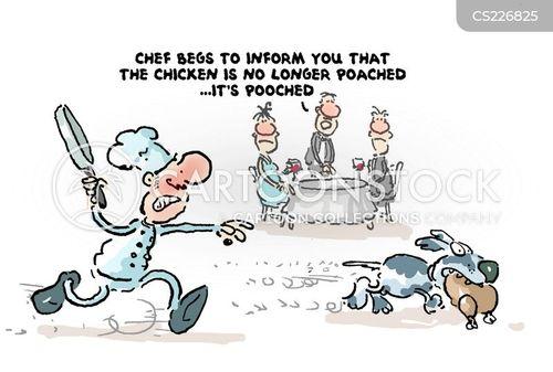 pooch cartoon