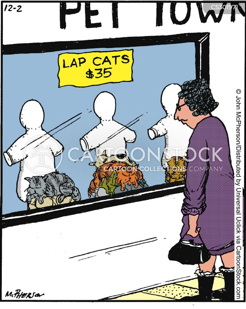 Lap Cat cartoons, Lap Cat cartoon, funny, Lap Cat picture, Lap Cat pictures, Lap Cat image, Lap Cat images, Lap Cat illustration, Lap Cat illustrations
