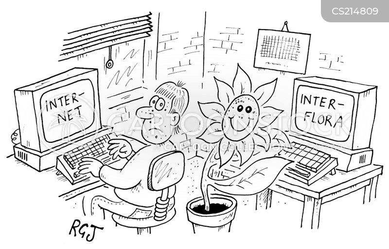 interflora cartoon