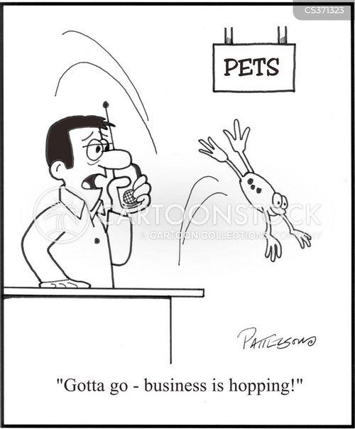 petshops cartoon
