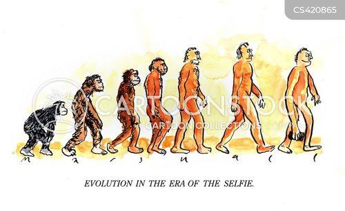 ape to man cartoon