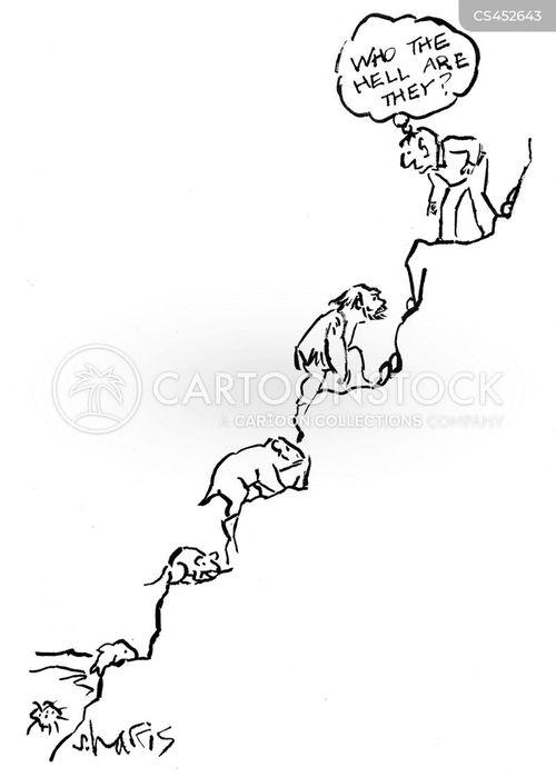 teleological cartoon