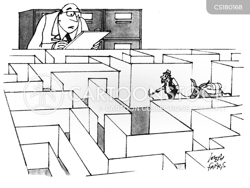 observations cartoon