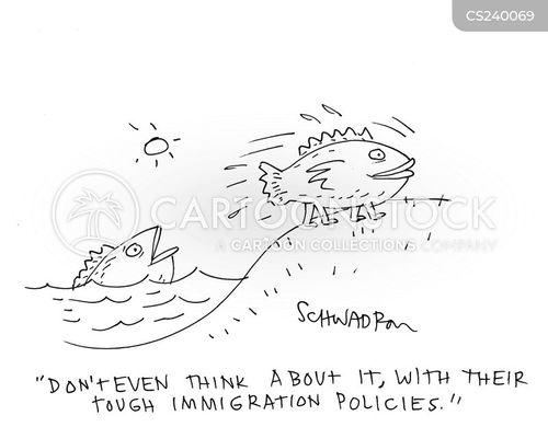 immigrations cartoon