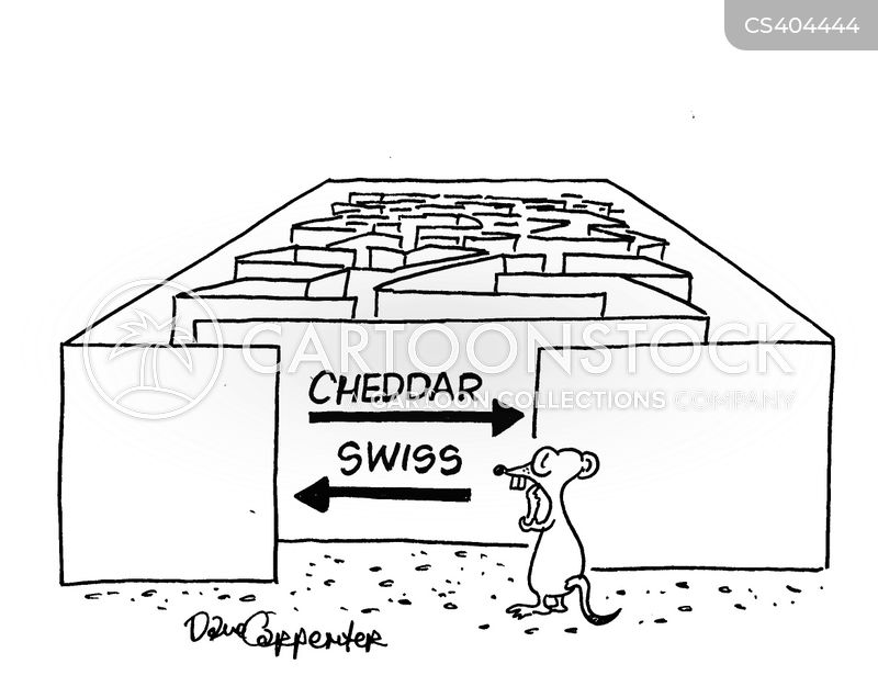 cheddar cheeses cartoon
