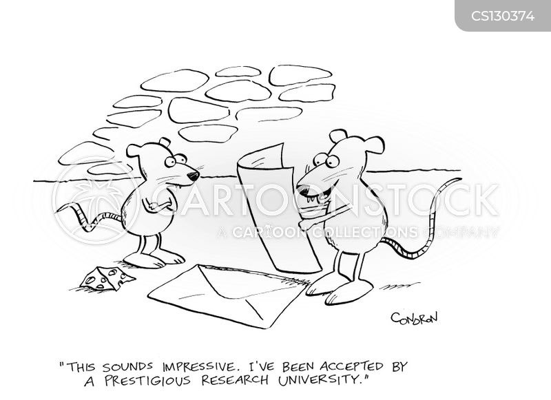 acceptance letters cartoon