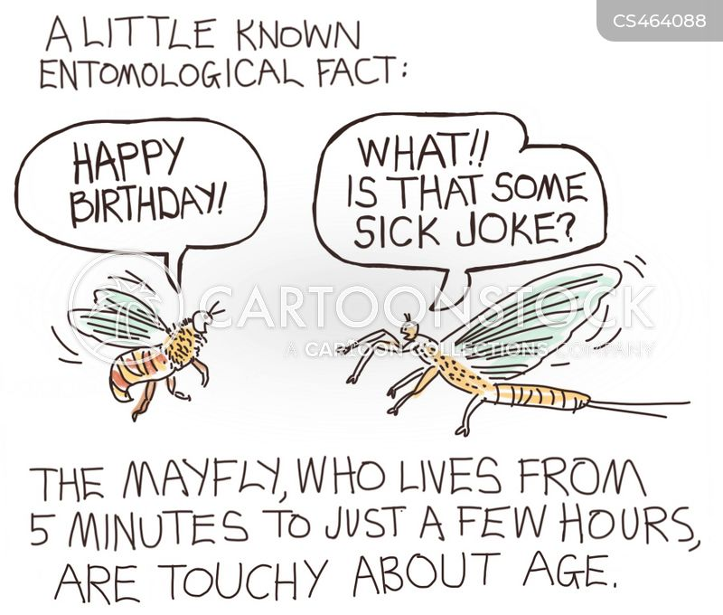 science-mayfly-insect-entomology-birthday-birthdays-dbcn704_low.jpg
