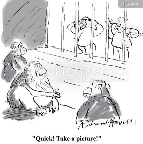 funny face cartoon