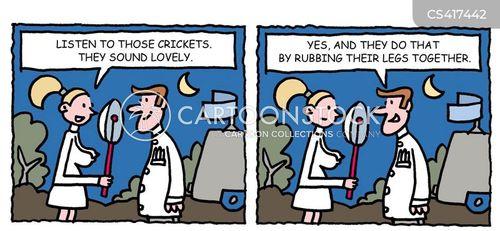 crickets cartoon